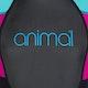 Animal 3/2mm Nova Shorty Wetsuit