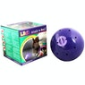 Likit Snack A Ball Stable Toy