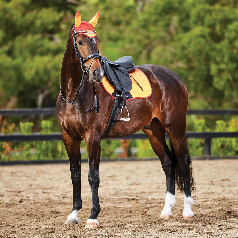 Weatherbeeta Prime Ombre All Purpose Saddle Pad Midnight Aurora