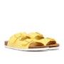 Lemon Pips