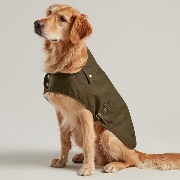 Joules Wax Dog Jacket