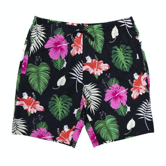 Shorts de natación Rip N Dip Maui Nerm