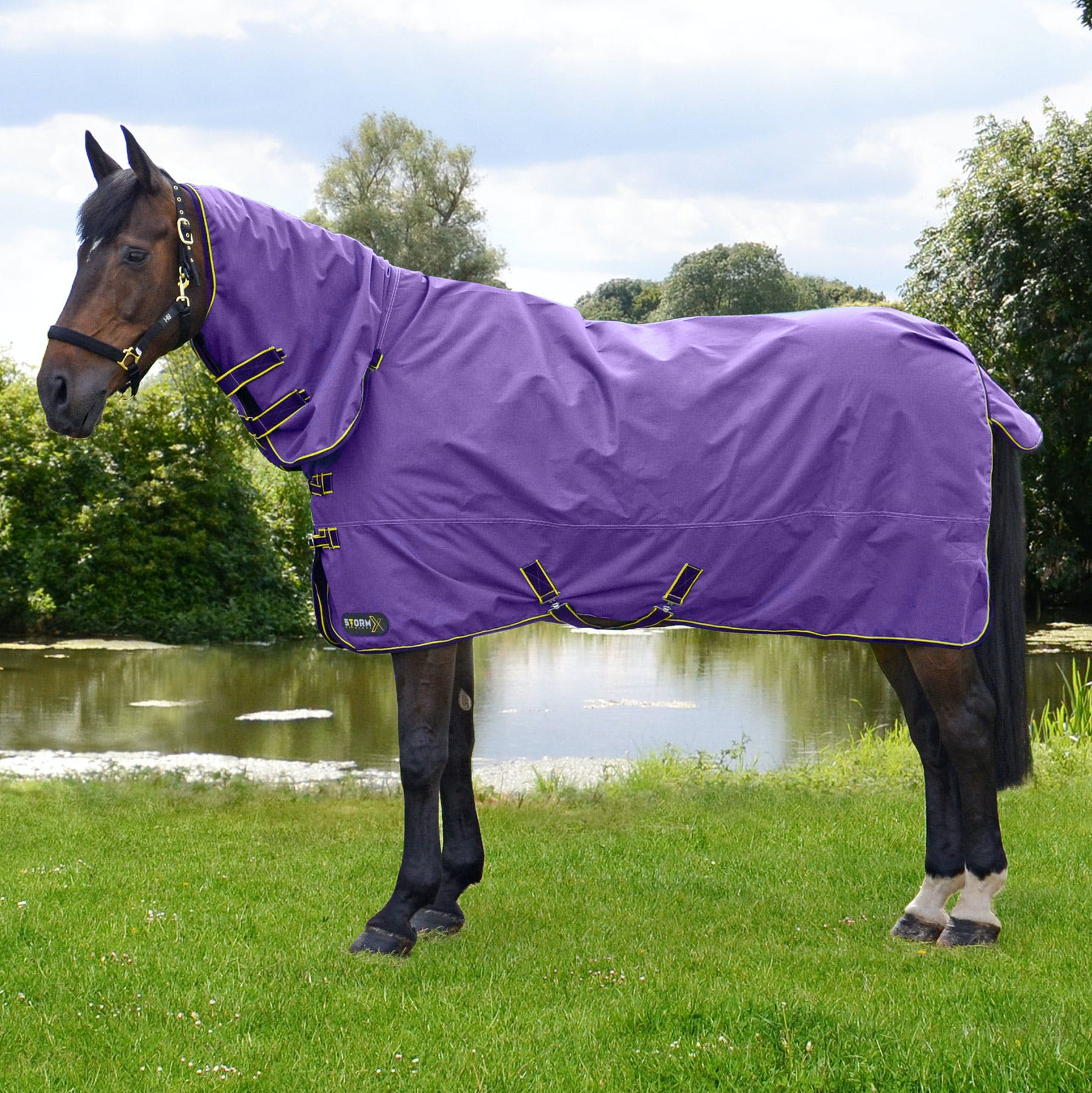 Small Pony Turnout Rug with Combi-Neck 100gm Fill