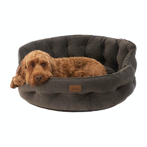 Joules Coastal Percher Square Dog Bed Coastal Dog Print Naylors Com