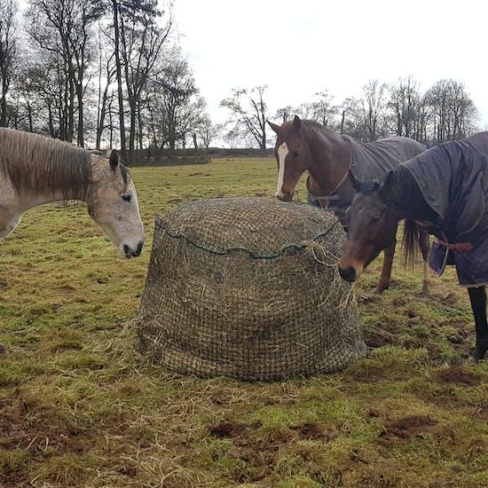 Trickle Net Large Round Bale Haynet