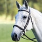 Shires Avignon Raised Cavesson Snaffle Bridle