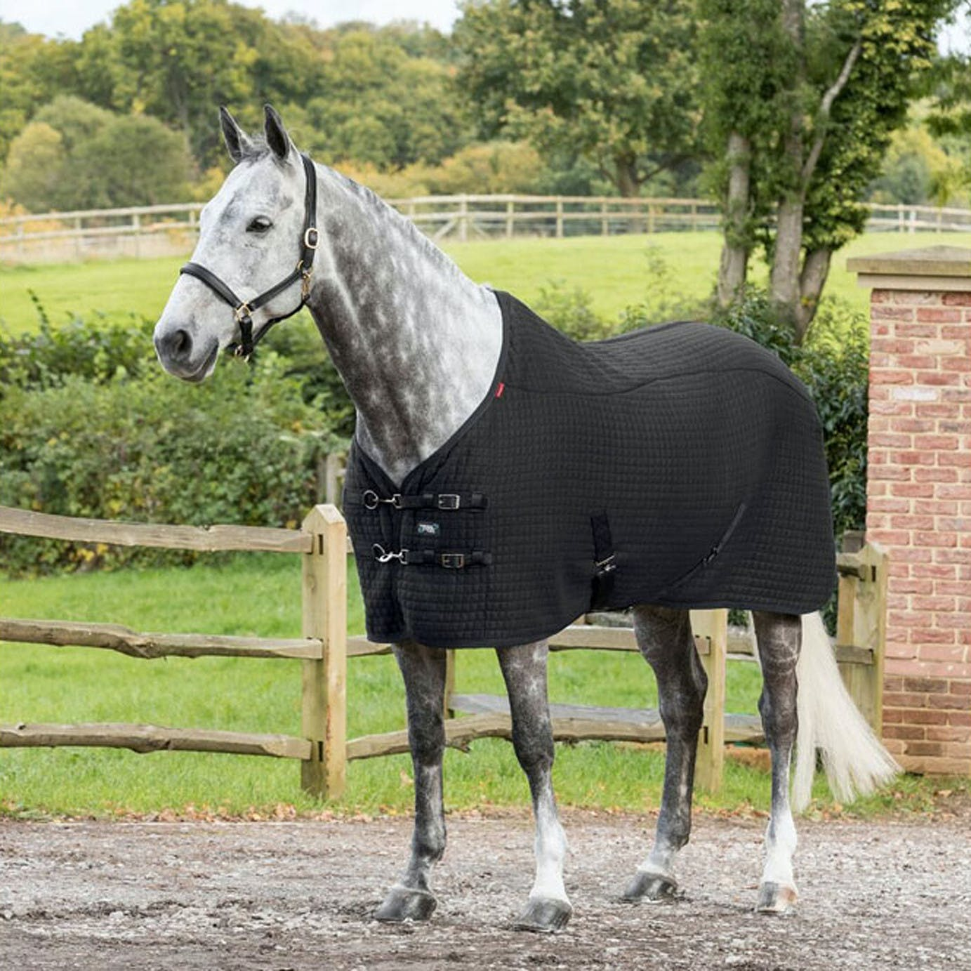 Lemieux Thermo Cool Cooler Rug From Rideaway
