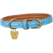 Shires Digby and Fox Padded Leather Halsbånd til Hund
