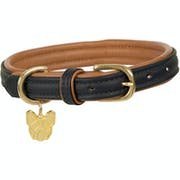 Shires Digby and Fox Padded Leather Dog Collar