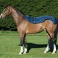 Rambo Summer Series 0g Turnout Rug