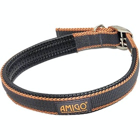 Amigo Colourful 犬用首輪 - Excalibur Orange