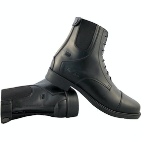 Mark Todd Back Zip Competition Paddock Boots - Black