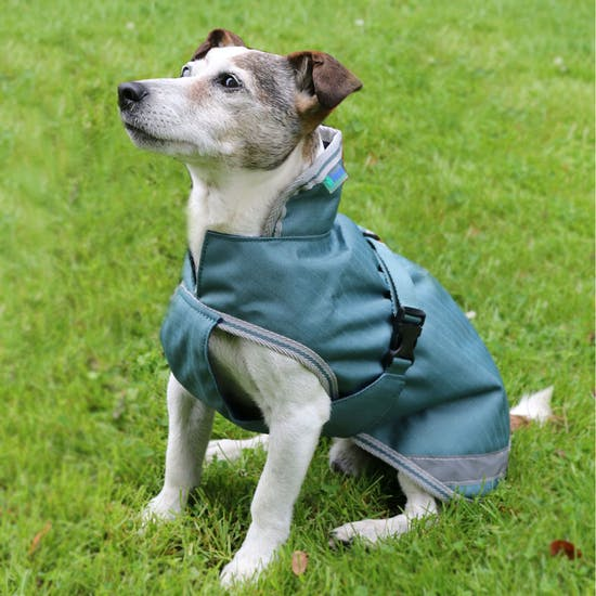 Bucas Freedom 50g Dog Jacket