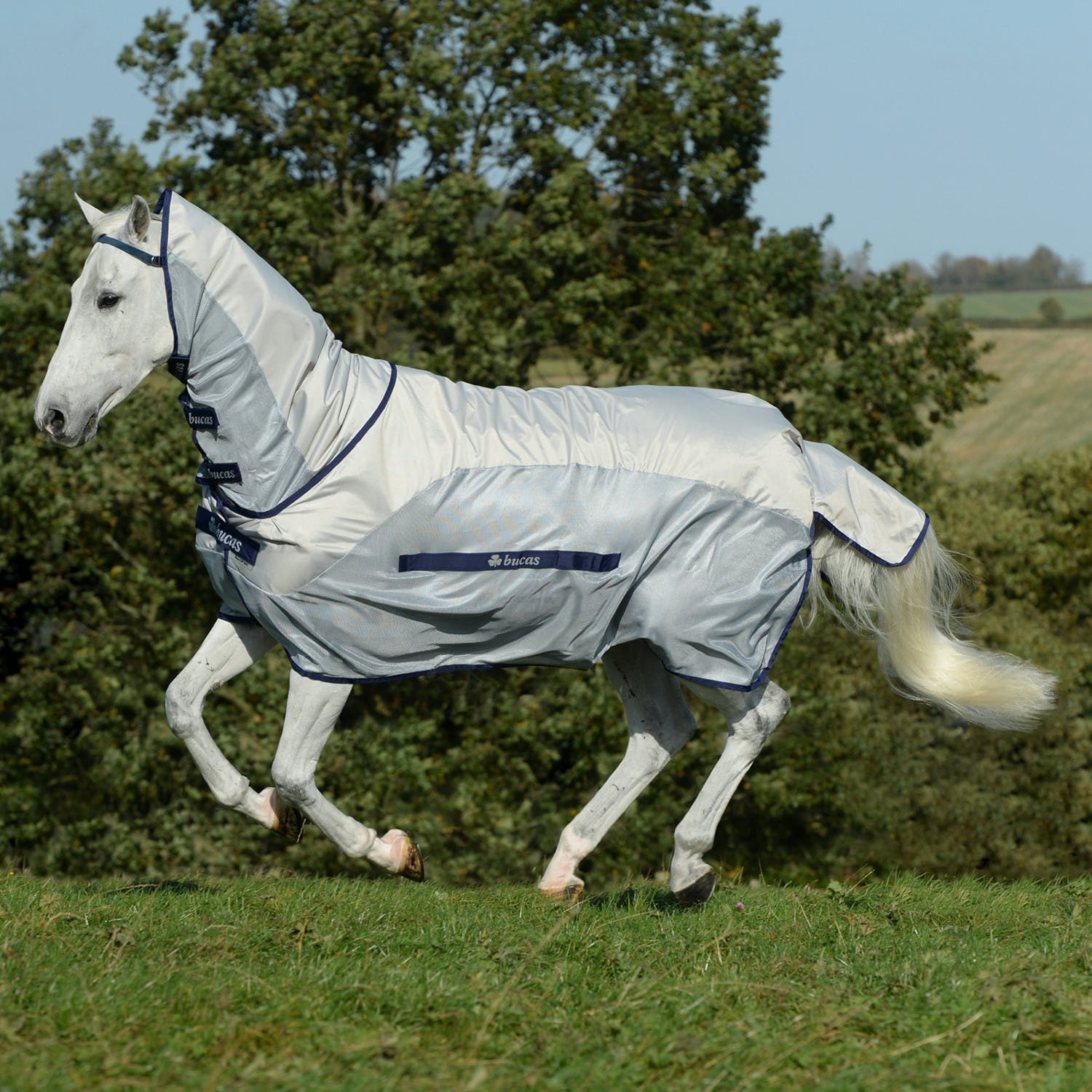 Bucas Buzz Off Rain Full Neck Fly Rug From Rideaway