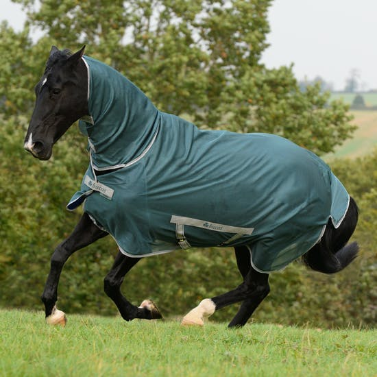 Bucas Freedom Full Neck Fly Rug