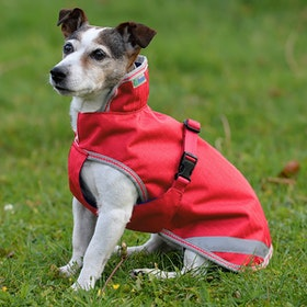 Bucas Freedom 50g Dog Jacket - Paradise Pink