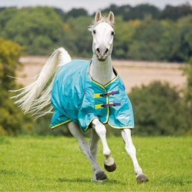 Shires Highlander Original Lite 100g Turnout Rug - Aqua Lime Purple