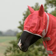 Bucas Freedom Fly Mask