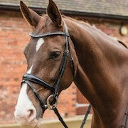 Mark Todd Dressage Crystal Snaffle Bridle