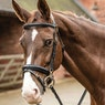 Mark Todd Clip Training Snaffle Bridle