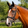 Mark Todd Performance Flash Snaffle Bridle