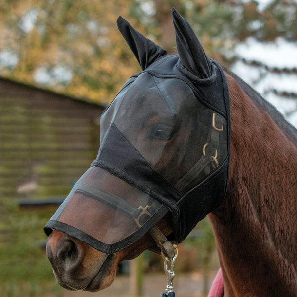Mark Todd Padded Full Face Fly Mask