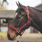 Mark Todd Turnout Safety Head Collar