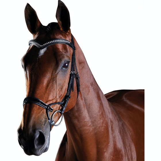Bridles Horse Bridles Amp Pony Bridles Derby House