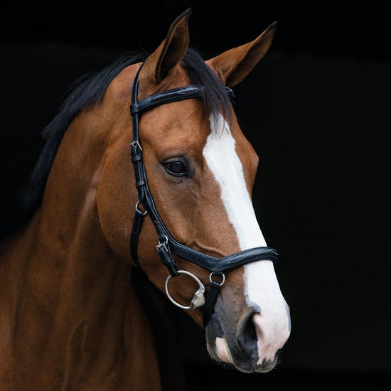 Rambo Micklem Deluxe Competition Snaffle Bridle