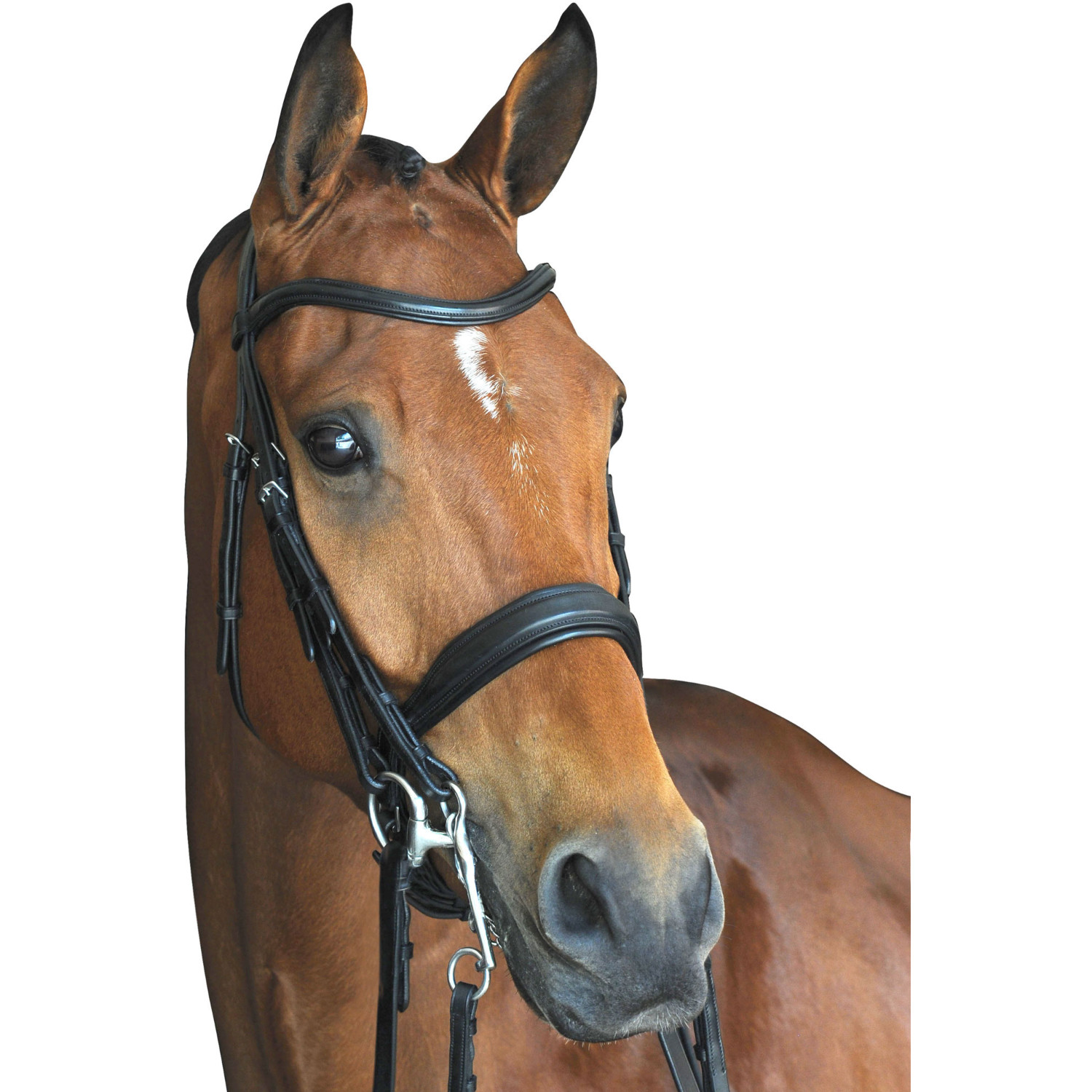 Soft Nylon Horse Rope Training Halter and 240cm Lead Rope