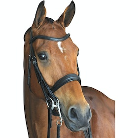 Collegiate Mono Crown Padded Raised Weymouth Bridle - Black