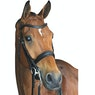 Collegiate Mono Crown Padded Raised Weymouth Bridle