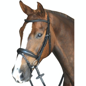 Collegiate Mono Crown Padded Raised Flash Snaffle Bridle - Black