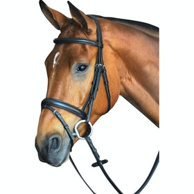 Collegiate Comfort Crown Padded Raised Flash Snaffle Bridle - Black