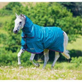 Shires Tempest Original 50g Combo Turnout Rug - Sea Green Pink