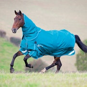 Shires Stormcheeta 200g Rug and Neck Set Turnout Rug