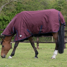 JHL Essential Medium 200g Combo Turnout Rug - Burgundy Navy