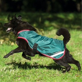 Rambo Waterproof Hundejacke - Green Red