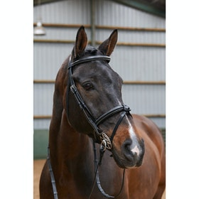 John Whitaker Eastwood Raised Flash Snaffle Bridle - Black