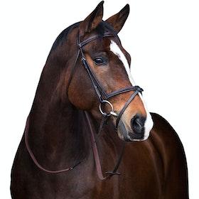 Bridon standard Mio Leather - Brown