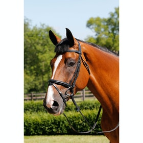 Mark Todd Padded Flash Snaffle Bridle - black