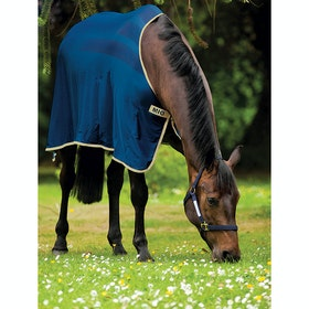 Mio Skrim Cooler Rug - Navy Tan