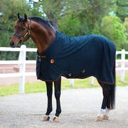 Rambo Ionic Stable Therapy Rug
