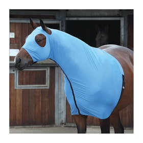 Camail Shires Full Face - Blue