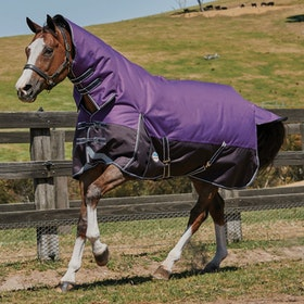 Weatherbeeta ComFiTec Plus Dynamic Combo Lite Turnout Rug - Purple Black
