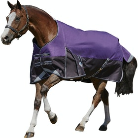 Weatherbeeta ComFiTec Plus Dynamic Medium Standard Neck Turnout Rug - Purple Black