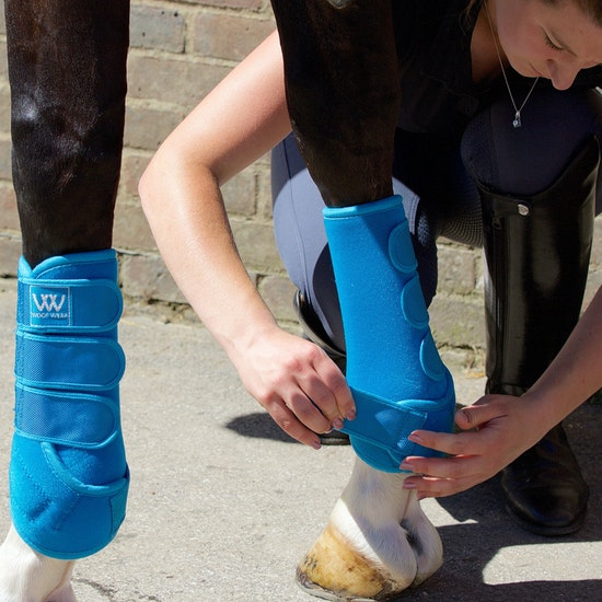 Woof Wear Training Bandagierunterlage