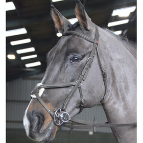 John Whitaker Ready to Ride Mexican Grackle Bridle - Black