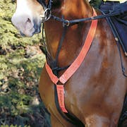 Equisafety Neck Reflective Bands
