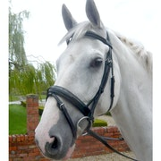 Mark Todd Patent Dressage Snaffle Bridle